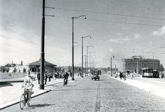 Rotterdam - Weena. Nieuw aangelegd, 05-08-1952.