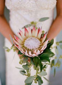 Backyard Chattanooga Wedding by Austin Gros Wedding Photography Simple Wedding Bouquets, Protea Wedding, Bride Bouquets, Bridesmaid Bouquet, Simple Weddings, Flower Bouquets, Wedding Dresses, Unique Flower Arrangements, Unique Flowers