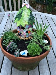 Our first attempt at a Fairy Garden.  Fairy house was a birdbox which we covered with buttons and the roof is coated with craft leaves.