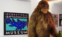 Groupon - Visit for Two or Four, or Membership for One or Up to Four at International Cryptozoology Museum (Up to 55% Off) in Downtown. Groupon deal price: $25