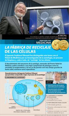 Premio Nobel de Medicina 2016