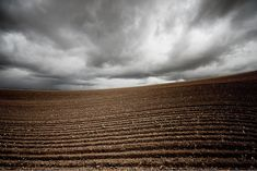 In these dramatic landscapes, photographer Lisa Wood perfectly blurs the line between reality and abstraction. The series, entitled Art of Farmland, documents the gorgeous countryside of the artist's hometown in Sun Valley, Idaho. However, as viewers gaze upon the visually stunning images, it becomes evident that these aren't your typical farmland scenes.