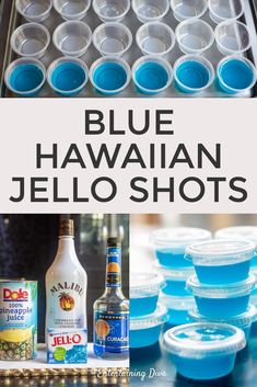 How to Make Blue Hawaiian Jello Shots - Entertaining Diva Recipes @ From House To Home GREAT recipe for Blue Hawaiian jello shots with coconut rum! The pineapple juice, Malibu rum and blue curacao tastes great with the berry blue jello. Jello Shot Recipes, Alcohol Drink Recipes, Alcohol Jello Shots, Jello Shots With Rum, Summer Jello Shots, Jello Shots With Malibu, Pina Colada Jello Shots Recipe, Jello Shooters, Fireball Recipes