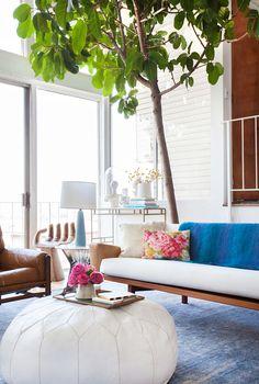 Brotes verdes - AD España, © Tessa Neustadt A Emily siempre le gusta sorprender con sus interiores. En su salón, por ejemplo, ha puesto un árbol de considerables dimensiones que se lleva todas las miradas de aquellos que lo visitan.