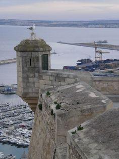 Os invitamos a pasear por el Castillo de Santa Barbará, en Alicante. #historia #turismo http://www.rutasconhistoria.es/loc/castillo-de-santa-barbara-alicante