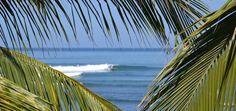 Surf Rental in La Saladita, Mexico