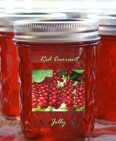 wpurp-searchable-recipe Red Currant Jelly - Red currant jelly has a distinctive taste, a combination of sweet and tart. Serve as an accompaniment to savory dishes such as roast lamb. Red Currant Jelly Recipe, Red Currant Jam, Currant Recipes, Canned Food Storage, Jam And Jelly, Jelly Jelly, Jelly Recipes, Jam Recipes, Fruit Jam
