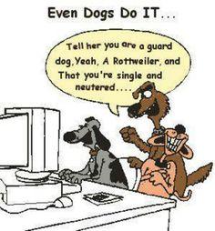 internet dating humour