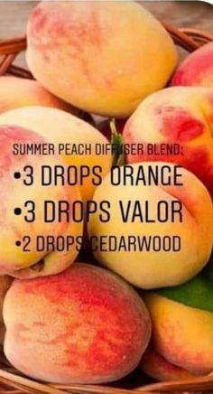 Young Essential Oils, Essential Oils Room Spray, Essential Oil Scents, Essential Oil Diffuser Blends, Essential Oil Uses, Diffuser Recipes, Living Oils, Aromatherapy Oils, Young Living