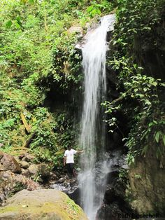 Parque Nacional Cerro Azul Meambar, Honduras - One of the more interesting stories in my life took place in this park.