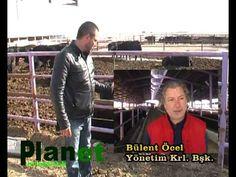 Planet Livestock Tanıtım Filmi 1