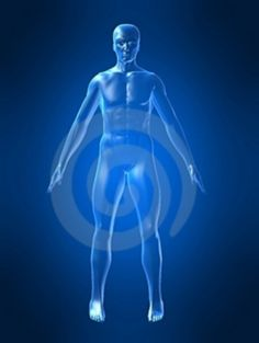 El nopal actúa como depurante en el organismo eliminando grasas.