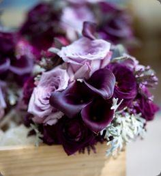 Eggplant calla lilies, lavender roses, purple ranunculus and dusty miller wedding bouquet