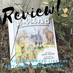 Review: Bruno, the Boisterous Blue Dog from the Bush by Robyn Osborne and John Phillips - Blue Dog, Big Sky, Arts And Crafts, Tours, Activities, Illustration, Gift Crafts, Illustrations, Art And Craft