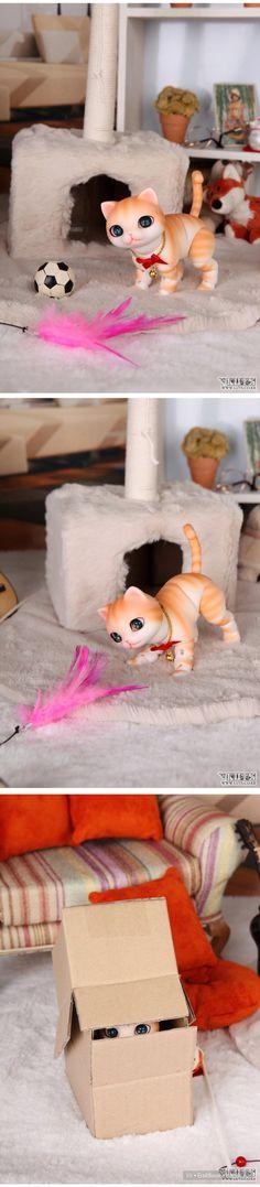 Cкидка на котят  БЖД на Luts
