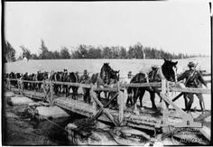 The Australian Light Horse Regiment crossing the pontoon bridge over the Suez Canal. Ww1 Pictures, War Horses, Black Watches, Cairo Egypt, World War One, Back In Time, Palestine, Wwi, Lighthouses