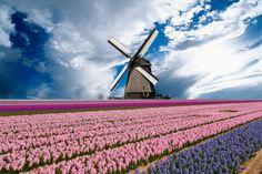 The Netherlands - Ecco il paese più tranquillo del mondo!
