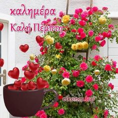 Good Night, Good Morning, Floral Wreath, Plants, Decor, Google, Anna, Nighty Night, Buen Dia