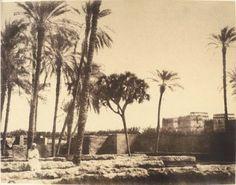 Gustave le Gray au Caire