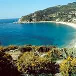 Visiting Elba with children. Sandy beaches, clean water and shallow swimming areas.