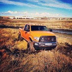 jacked up diesel trucks Dodge Diesel Trucks, Ram Trucks, Jeep Truck, Cool Trucks, Chevy Trucks, Pickup Trucks, Dodge Cummins, Powerstroke Diesel, Lifted Dodge