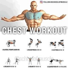 """5,587 Me gusta, 55 comentarios - School Of Muscle (@schoolofmuscle) en Instagram: """"✅New Chest Workout! (As Requested) . . . 'Save' It For Next Chest Day! . . ✅ Chest Still…"""""""