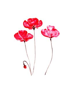 """Red poppies watercolor print, flower nature illustration 8"""" x 10"""""""
