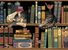 Max in the StacksBy Charles Wysocki Max in the Stacks Wall Tapestry by Charles Wysocki at Nostalgic Art, Book Wallpaper, And So It Begins, Naive Art, Illustrations, Book Illustration, Sale Poster, Tapestry Wall Hanging, I Love Cats