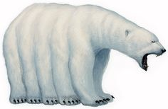 Kokogiak (Inuit) - Ten-legged polar-bear monsters that can summon hallicinations of any creature they eat, so they can use these illusions to lure loved ones of the victim towards them to become their next meal.