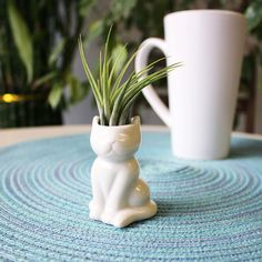 NW Wholesaler White Ceramic Air Head Meditation Figurine Pot with Air Plant