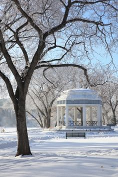 Saskatoon Bandstand in Winter Saskatchewan Canada, Canadian Winter, Winter Scenery, O Canada, Capital City, Places Ive Been, Beautiful Places, Winter Parties, Outdoor Structures
