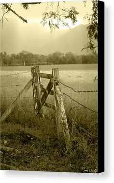 Gate Canvas Print featuring the photograph Forgotten Fields by Holly Kempe