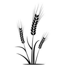 spiga di grano, spiga, grano, silhouette, agricoltura
