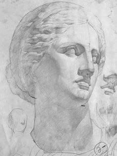 Academic Drawing, Academic Art, Anatomy Drawing, Anatomy Art, Drawing Heads, Painting & Drawing, Greek Drawing, Drawing Sketches, Art Drawings