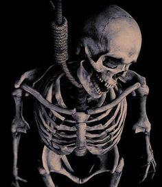 Sci Fi Horror, Skull And Bones, Skull Art, Macabre, Human Body, Character Art, Cool Photos, Batman, Fantasy