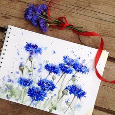 Watercolor garden. Part 6• Centaurea