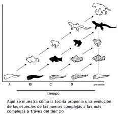 Teoría de Lamarck | Portal Académico del CCH