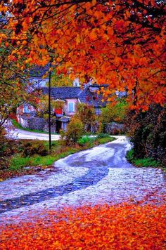 Monodendri, one of the most beautiful villages of Zagorochoria, Epirus, Greece 🇬🇷️ Beautiful Islands, Beautiful World, Beautiful Places, Places To Travel, Places To See, Myconos, Greece Travel, Solo Travel, Santorini