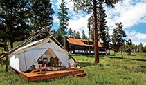 Paws up Montana ...I see this as our next Family vacation..Jersey may have to wait