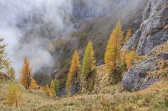 White Valley in the Bucegi Mountains, Romania autumn Valley View, Romania, Environment, Highlands, Autumn, Fall, Hiking, Scene, Clouds