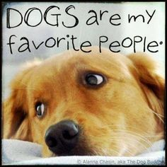 Dogs are my favorite people. Dog quote