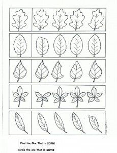 Crafts,Actvities and Worksheets for Preschool,Toddler and Kindergarten.Lots of worksheets and coloring pages. Fall Preschool Activities, Preschool Learning Activities, Kindergarten Homework, Creative Curriculum, Tracing Letters, Leaf Crafts, School Readiness, Worksheets For Kids, Drawing For Kids