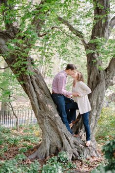 In a tree: http://www.stylemepretty.com/new-york-weddings/new-york-city/manhattan/2015/07/08/15-picture-perfect-central-park-spots-for-engagement-sessions/