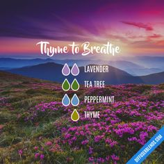Thyme to Breathe - Essential Oil Diffuser Blend