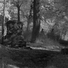 The Haunted Bachelor's Grove Cemetery in Midlothian, Illinois. This is supposedly one of the most haunted cemeteries in the world Most Haunted Places, Spooky Places, Haunted America, Old Cemeteries, Graveyards, Ghost Hauntings, Places In America, Ghost Pictures, Haunted History