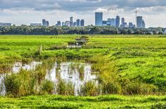 Rotterdam vanuit de polder
