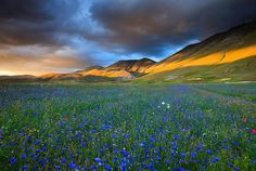 Castelluccio Plateau - Sibylline Mountains National Park - Norcia
