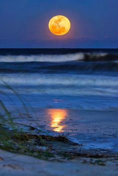 Full moon, Hilton Head Island, SC
