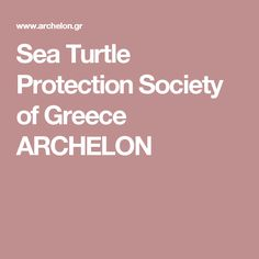 Sea Turtle Protection Society of Greece ARCHELON