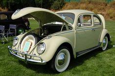Volkswagen Bug painted stock Jade Green L349